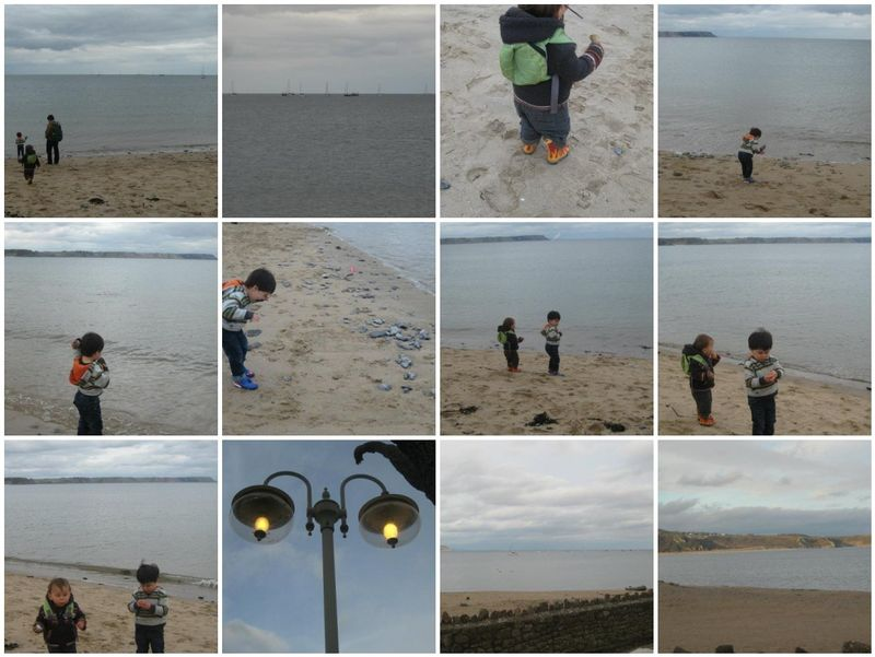 Gower blog mosaic